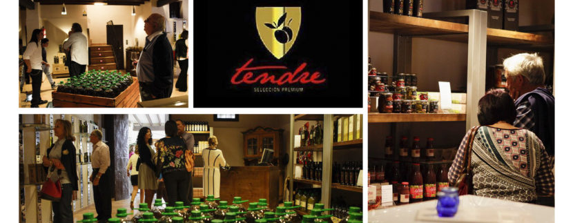 Blog Image for El Tendre Olive Grove A Life in Spain